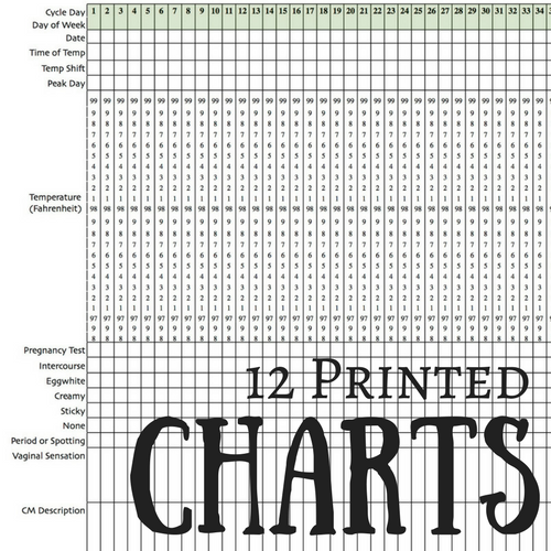 Chart Journal 12 Printed Charts