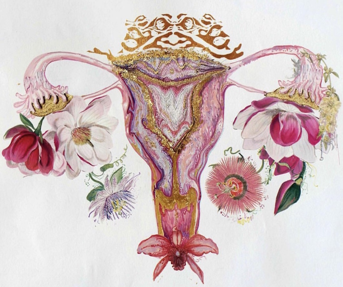 What Is The Size Of The Uterus? | Natural Birth Control